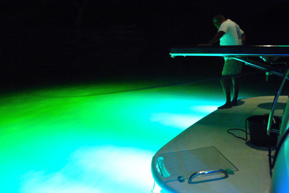 Marine interior underwater led lighting installation in for Best light for night fishing